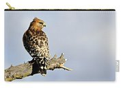 Hawk Looking Back Carry-all Pouch