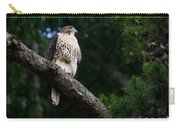 Hawk On Norris Lake Carry-all Pouch