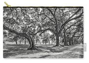 Heading South Bw Carry-all Pouch