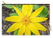 Heartleaf Arnica In Lake Louise Rv Park In Banff National Park-alberta Carry-all Pouch