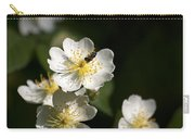 Heaven's Scent Carry-all Pouch by Christina Rollo