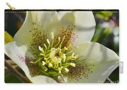 Helleborus Bright Carry-all Pouch