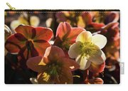 Helleborus Backlight Blossoms Carry-all Pouch
