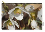 Helleborus Niger - Christrose Carry-all Pouch