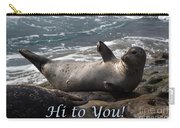 Hello To You Sea Lion Carry-all Pouch