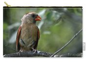 Hello Young Cardinal Carry-all Pouch
