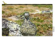 Partridge 3 Carry-all Pouch