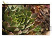Hens And Chicks Sedum 1 Carry-all Pouch