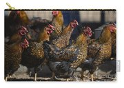 Hens Of Distinction Carry-all Pouch