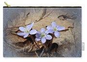 Hepatica Wildflowers - Hepatica Nobilis Carry-all Pouch