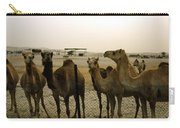 Herd Of Camels In A Farm, Abu Dhabi Carry-all Pouch