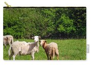 Here Is Looking At Ewe Carry-all Pouch