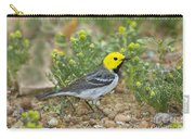 Hermit Warbler Carry-all Pouch