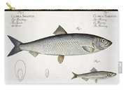 Herring And Sprat Plate Xxix Carry-all Pouch