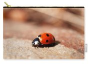 Hey There Little Lady Bug Carry-all Pouch