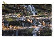 Hidden Falls 3 Carry-all Pouch