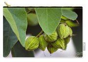 Hidden Fruit Carry-all Pouch