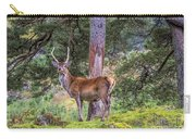 Highland Stag Carry-all Pouch