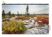Highlands Of West Virginias Dolly Sods Carry-all Pouch