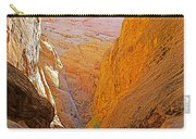 Hiking In Grand Wash In Capitol Reef National Park-utah Carry-all Pouch