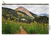 Hiking In La Sal Carry-all Pouch