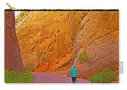 Hiking On Capitol Gorge Pioneer Trail In Capitol Reef National Park-utah Carry-all Pouch