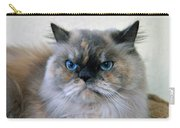 Himalayan Persian Cat Carry-all Pouch