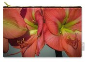Hippeastrum Carry-all Pouch