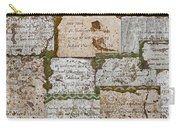 History Of Hill Ward Asylum Carry-all Pouch