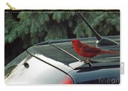 Hitching A Ride Carry-all Pouch