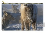 Hoarfrosted Elk Calf Carry-all Pouch