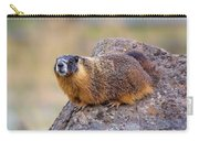 Hoary Marmot  Carry-all Pouch