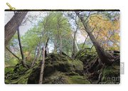 Hocking Hills Moss Covered Cliff Carry-all Pouch