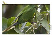 Hoffman's Conure Carry-all Pouch