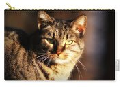 Homeless Cat Carry-all Pouch