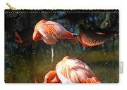 Homosassa Springs Flamingos 5 Carry-all Pouch