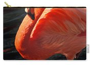 Homosassa Springs Flamingos 8 Carry-all Pouch