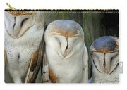 Homosassa Springs Snowy Owls 1 Carry-all Pouch