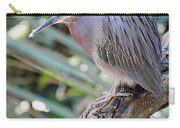 Homosassa Springs Waterfowl 10 Carry-all Pouch