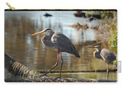 Homosassa Springs Waterfowl 8 Carry-all Pouch