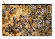 Honey Bee Queen And Colony On Honeycomb Carry-all Pouch