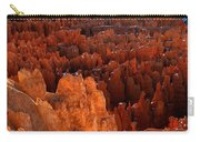 Hoodoo Texture Carry-all Pouch