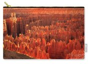Hoodoos Basin Carry-all Pouch by Robert Bales