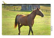 Horse And Old Barn In Etowah Carry-all Pouch