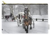 Horse Carriages In Snowy Park Carry-all Pouch