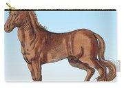 Horse Historiae Animalium  Carry-all Pouch