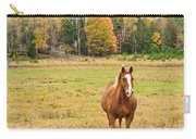 Horse In Field-fall Carry-all Pouch