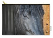 Horse In Stable Carry-all Pouch by Elena Elisseeva