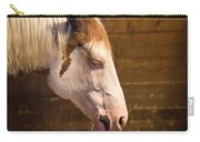 Horse Nap Carry-all Pouch