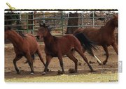Horse Play Painting  Carry-all Pouch